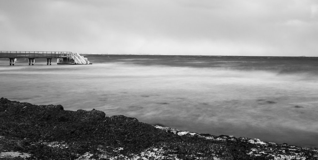 Hellerup Havn 2021